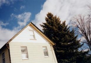 detail roofline